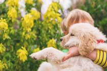 Boy hugging golden retriever puppy dog with flowers on background — Stock Photo