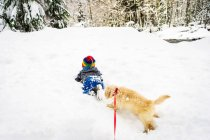 Boy playing with Golden retriever puppy dog in snow — Stock Photo