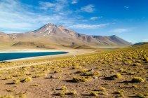 Живописный вид на лагуну Альтиплано, вулкан и пиков Анд, Чили — стоковое фото