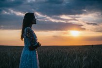 Вид сбоку чувственной женщины, стоящей в пшеничном поле и смотрящей на закат — стоковое фото