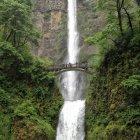 Majestueux multnomah falls, Oregon, États-Unis — Photo de stock