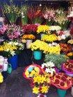 Различные цветы для продажи на цветочном рынке — стоковое фото