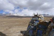 Живописный вид религиозной святыни в Тибет, Китай — стоковое фото