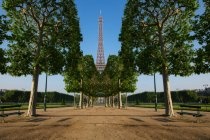 Portrait of Eiffel Tower seen through a row of trees — Stock Photo