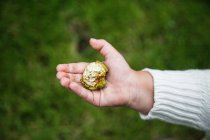 Cropped image of child holding a nut against blurred background — Stock Photo