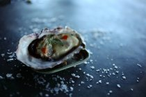 Fresh Oyster with dill and salt on grey surface — Stockfoto