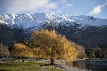 Neuseeland, Landschaft mit schneebedeckten Bergen — Stockfoto
