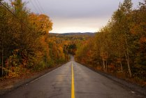 Symmetrical view of road with single yellow line and autumn trees on sides, Quebec, Canada — Stock Photo