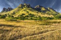 Vista panoramica della montagna da attraverso l'erba appassita di savana tropicale, isola di Flores, Indonesia — Foto stock