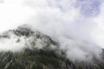 США, штат Вашингтон, Национальный парк Гора Рейнир, живописным видом низких облаков через горный пик — стоковое фото