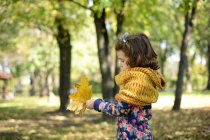 Pretty little girl playing in park with autumn leaves — Stock Photo