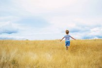 Маленький мальчик бежит по полю под облачным небом — стоковое фото