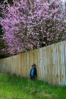 Boy wearing sunglasses leaning on fence in garden with blooming tree — Stock Photo