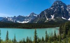 Chefren mt e Lago Waterfowl inferiore a Canada, Alberta, Banff National Park — Foto stock