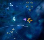 Close-up view of little flowers at nighttime — Stock Photo