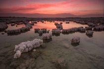 Величний Схід сонця над кристали в Мертве море, Ізраїль — стокове фото