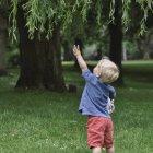 Little boy trying to reach branch in garden — Stock Photo