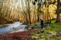 Menino brincando perto do rio na floresta — Fotografia de Stock