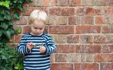 Ritratto di ragazzo che tiene la pianta davanti al muro di mattoni — Foto stock