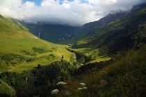 Malerischer Blick auf das schöne grüne Tal in den Alpen — Stockfoto