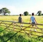 Два мальчика сидят на воротах — стоковое фото