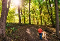 Boy and golden retriever dog walking in forest — Stock Photo