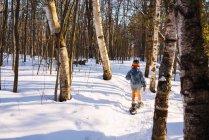 Boy snowshoeing through a birch forest — Stock Photo