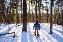 Хлопчик вибігає в березовий ліс. — стокове фото