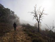 Homme marchant le long d'un sentier dans le brouillard, Espagne — Photo de stock