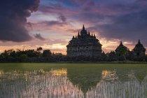 Мальовничий вид Plaosan комплексу, Центральна Ява, Індонезія — стокове фото
