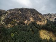 Vue panoramique du parc forestier national Gougane Barra, comté de Cork, Irlande — Photo de stock
