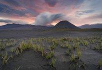 Vue panoramique du Mont Bromo au coucher du soleil, est de Java, Indonésie — Photo de stock