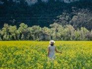 Donna che cammina in un campo di colza, Valensole, Provenza, Francia — Foto stock