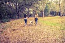Duas mulheres passeando seus cães, São Petersburgo, Flórida, América, EUA — Fotografia de Stock
