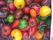 Вид зверху свіжими помідорами різнокольорові — стокове фото