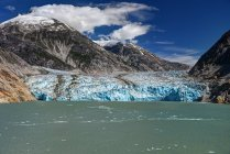 Scenic view of Endicott Glacier, Tongass National Forest, Alaska, America, USA — Stock Photo