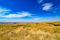 Vista panoramica del paesaggio rurale, Alberta, Canada — Foto stock