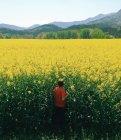 Ragazzo che cammina in un campo di colza — Foto stock