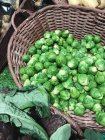 Basket of brussels sprouts, closeup view — Stock Photo