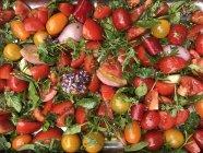Tomates hachées, oignons et herbes sur une plaque à pâtisserie — Photo de stock