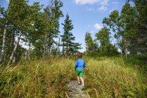 Niño caminando por un sendero forestal - foto de stock