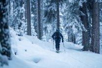 Man snowshoeing through winter forest, Zauchensee, Salzburg, Austria — Stock Photo