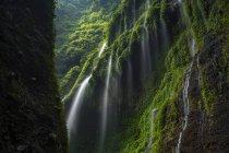 Vue panoramique sur la cascade de Madakaripura, Java Est, Indonésie — Photo de stock