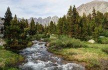 Rock Creek fluindo através de the Basin Miter, Sequoia National Park, Califórnia, América, Estados Unidos da América — Fotografia de Stock