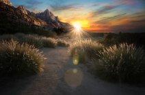 Живописный вид на закат горы, Национальный парк Зайон, Юта, Америка, США — стоковое фото