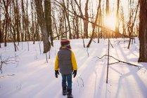 Хлопець, який блукає лісом у снігу (США). — стокове фото