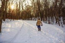 Хлопець, який прогулювався лісом під снігом, США. — стокове фото