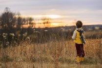 Вид сзади на мальчика, стоящего в поле, США — стоковое фото