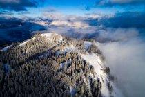 Aerial view on a road winding through snow covered trees, Altenmarkt, Salzburg, Austria — Stock Photo