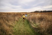Three children running in a field, United States — Stock Photo